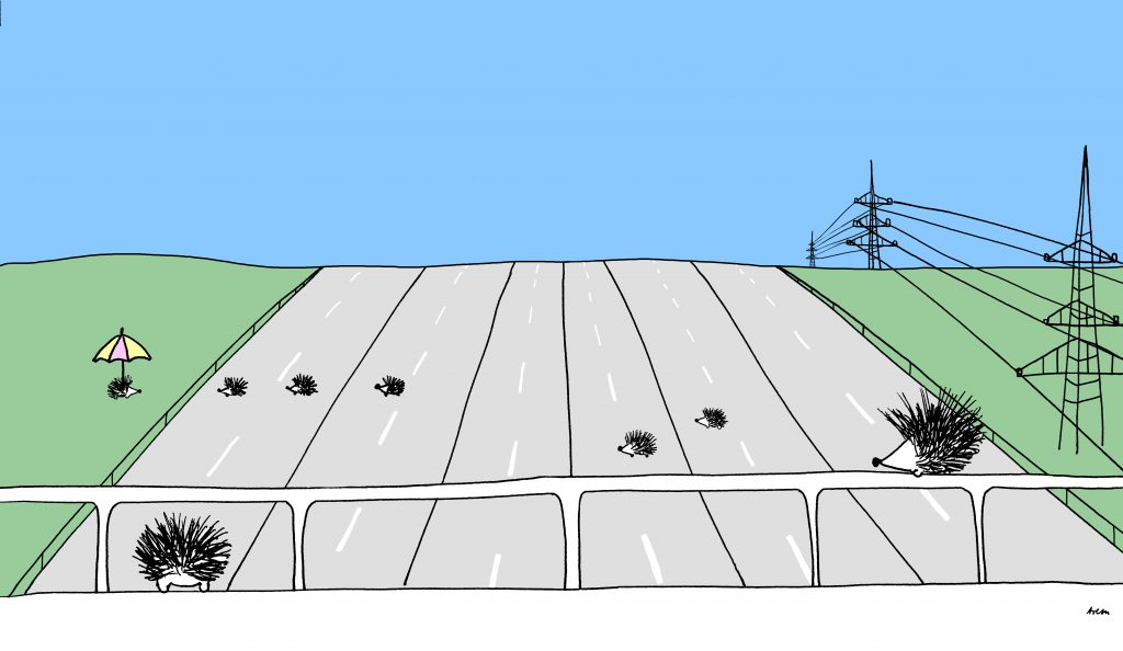 Leere Autobahn mit Igeln