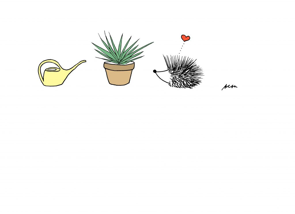 Illustration Igel von Arezu Weitholz